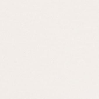 モダール&アンゴラ×無地(オフホワイト)×天竺ニット_全5色