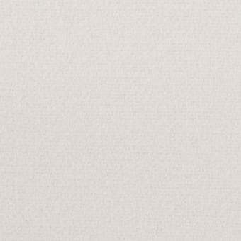 ウール&ナイロン×無地(パールグレー)×フラノ(フランネル) サムネイル1