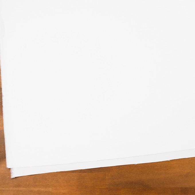 コットン×無地(ホワイト)×オックスフォード_全2色 イメージ2