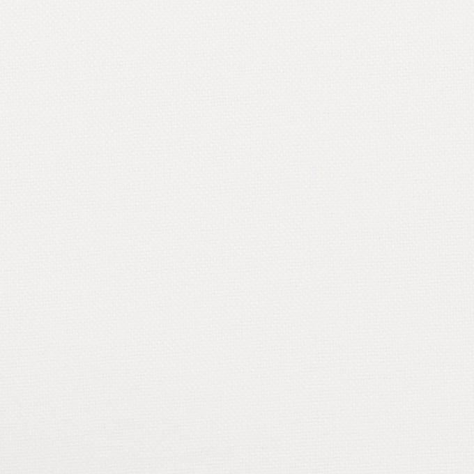 コットン×無地(ホワイト)×オックスフォード_全2色 イメージ1