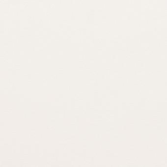コットン×無地(オフホワイト)×ブロード サムネイル1