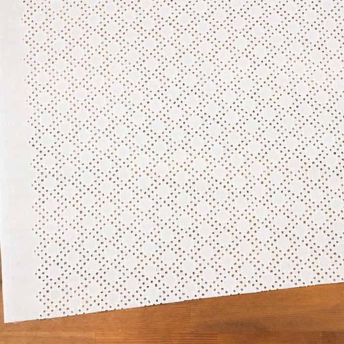 コットン×サークル(オフホワイト)×ローン刺繍_全3色 イメージ2