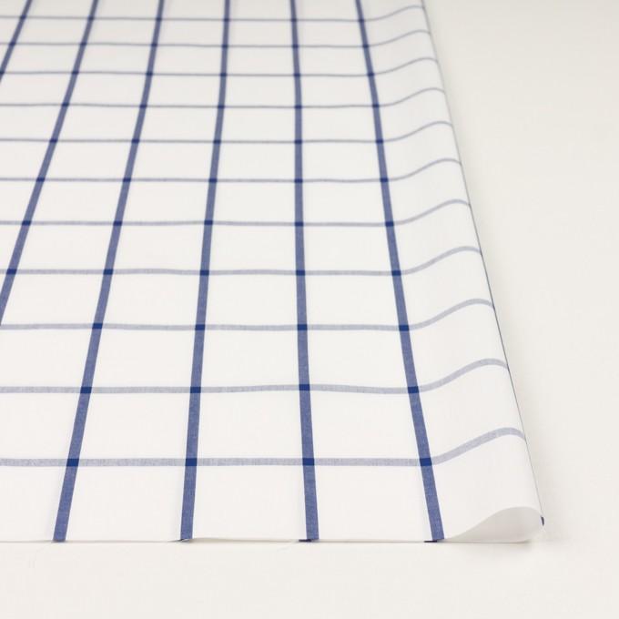 コットン×チェック(ホワイト&ブルー)×ブロード_全3色 イメージ3
