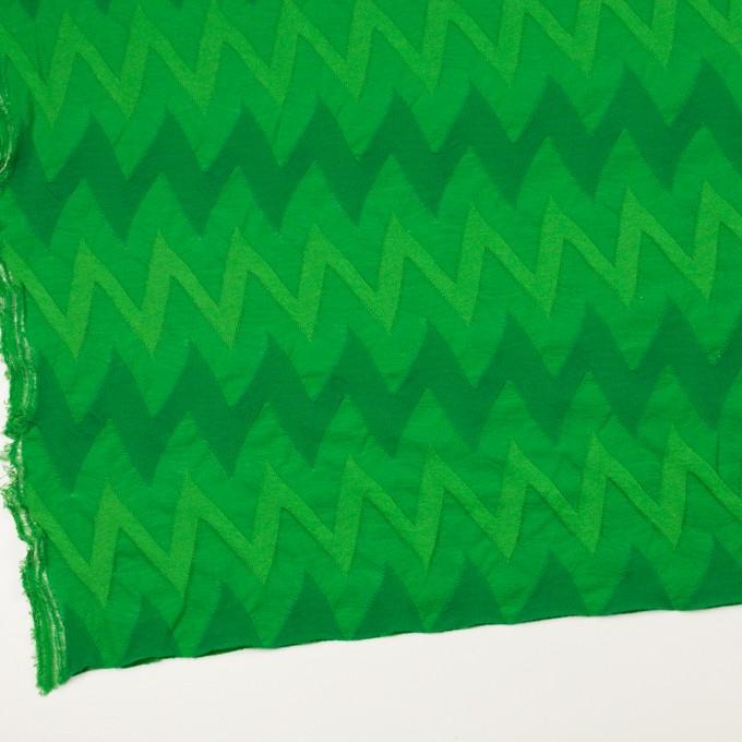 コットン×ウェーブ(グリーン)×ジャガードニット イメージ2