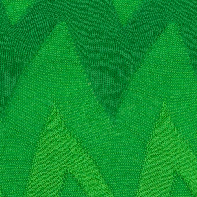 コットン×ウェーブ(グリーン)×ジャガードニット イメージ1