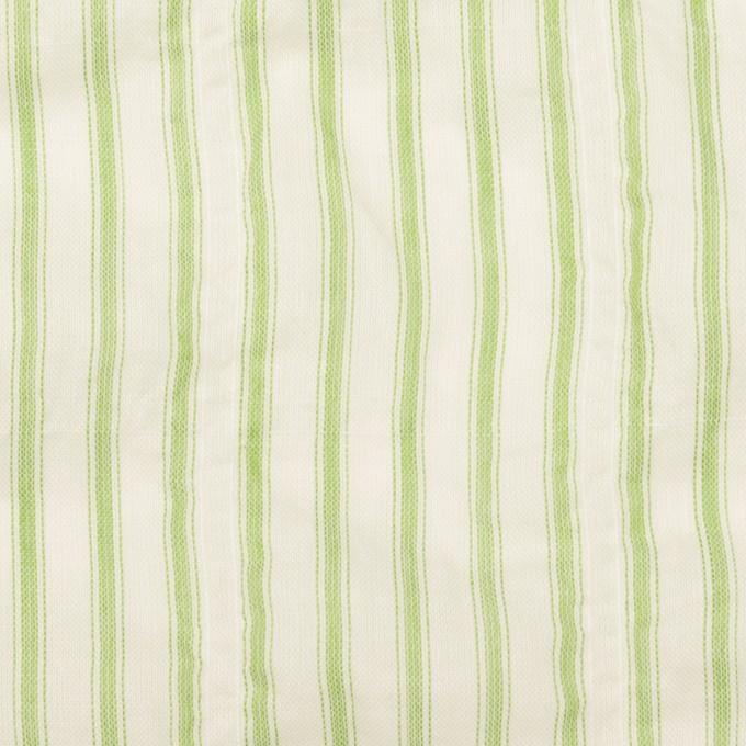 コットン&ポリウレタン×ストライプ(グリーン)×ボイルシャーリング_全2色 イメージ1