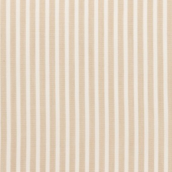 コットン×ストライプ(ベージュ)×ローン_全2色