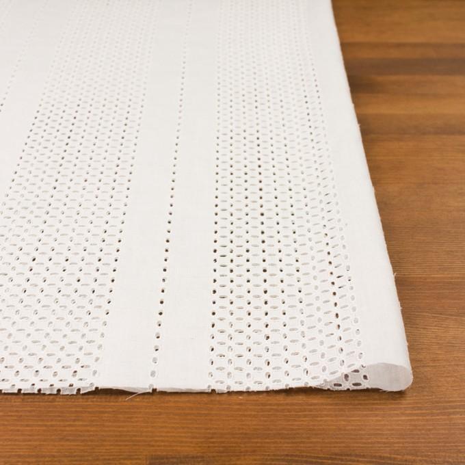 コットン×ストライプ(オフホワイト)×ローン刺繍_全2色 イメージ3