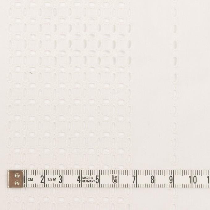 コットン×ストライプ(オフホワイト)×ローン刺繍_全2色 イメージ4