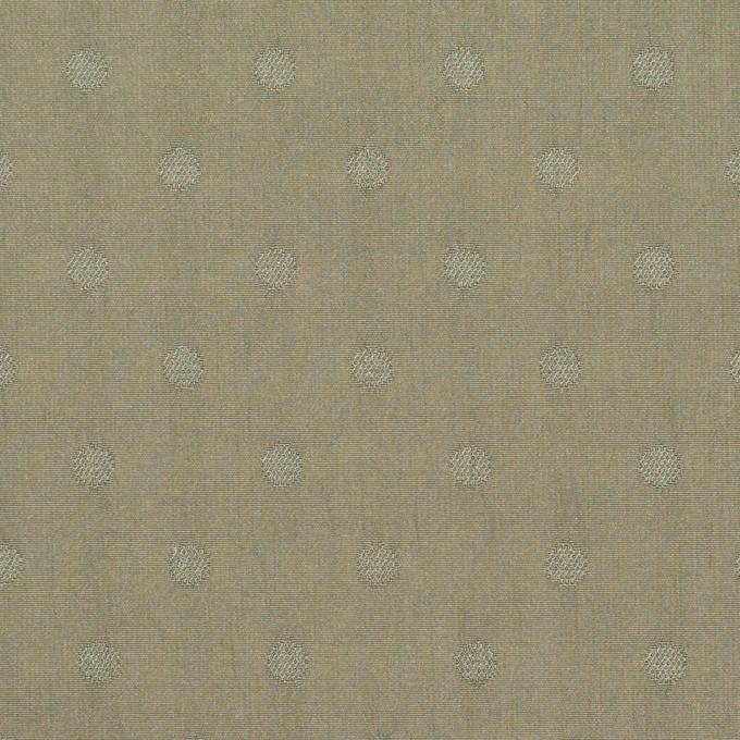 ナイロン×ドット(アイビーグリーン)×ポプリンジャガード イメージ1