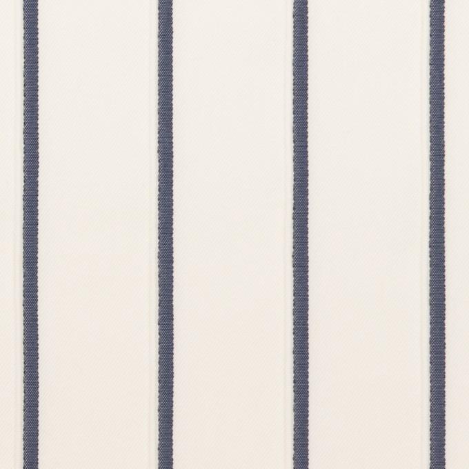 コットン&ナイロン混×ストライプ(ミルク&ネイビー)×タテタック イメージ1