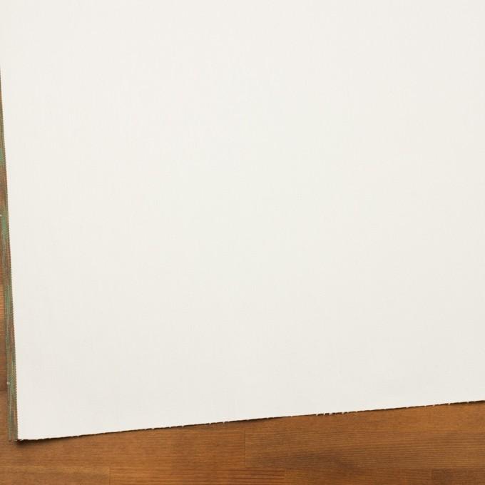 コットン×無地(オフホワイト)×セルビッチ・カツラギ イメージ2