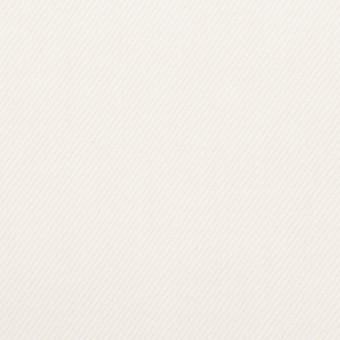 コットン×無地(オフホワイト)×セルビッチ・カツラギ