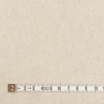 コットン×無地(ベージュグレー)×セルビッチ・カツラギ サムネイル4