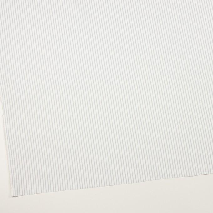 コットン×ストライプ(ブルーグレー)×斜子織 イメージ2