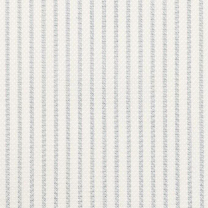 コットン×ストライプ(ブルーグレー)×斜子織 イメージ1