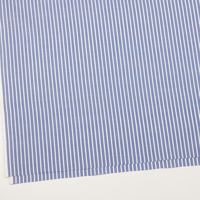 コットン×ストライプ(ブルー)×斜子織 イメージ2