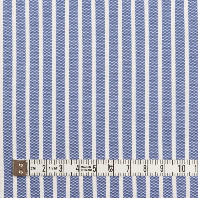 コットン×ストライプ(ブルー)×斜子織 イメージ4