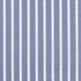 コットン×ストライプ(ブルー)×斜子織