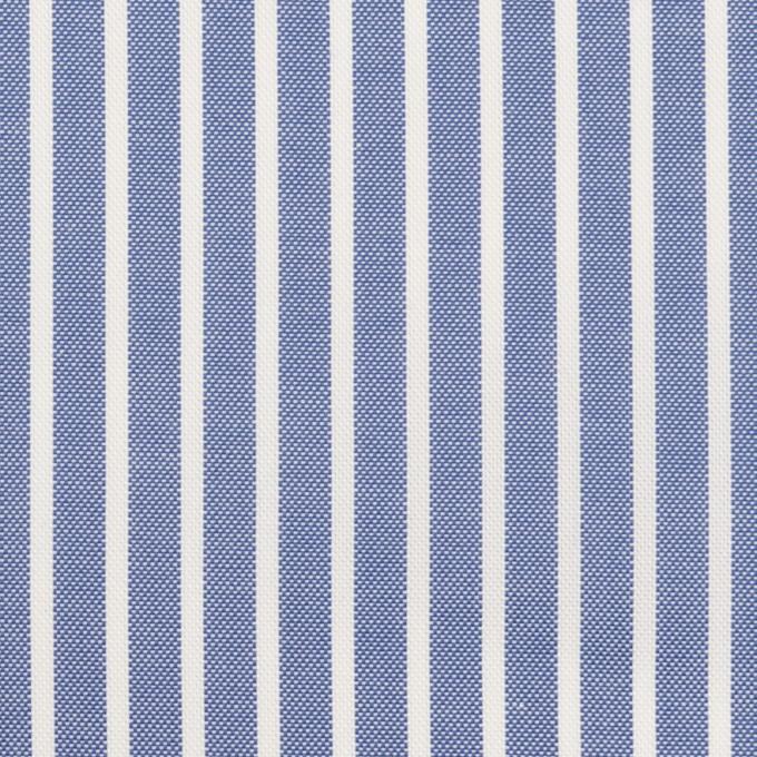 コットン×ストライプ(ブルー)×斜子織 イメージ1