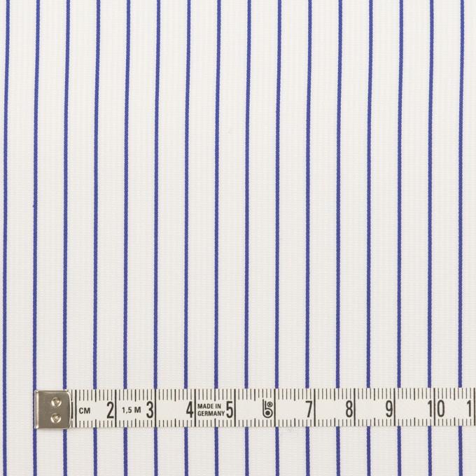 コットン×ストライプ(ブルー)×ジャガード イメージ4