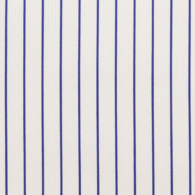 コットン×ストライプ(ブルー)×ジャガード イメージ1