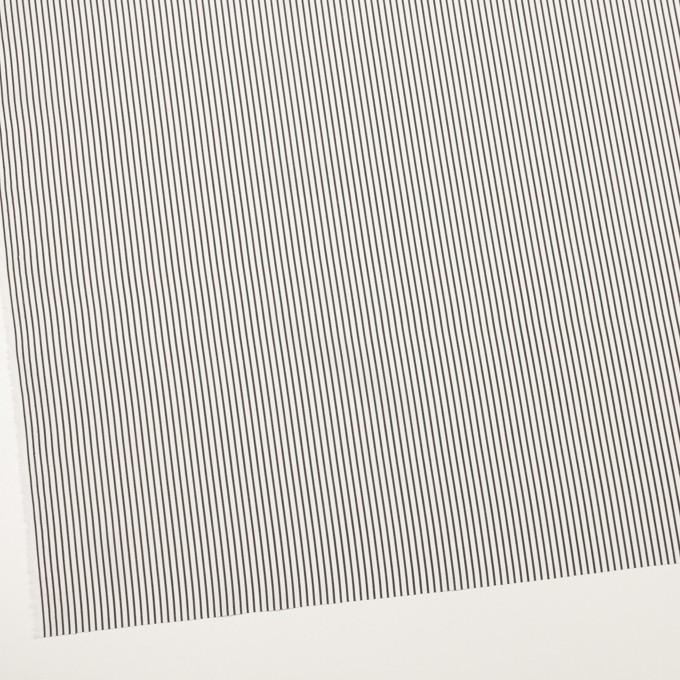 コットン×ストライプ(チャコールブラック)×ブロード_全2色 イメージ2