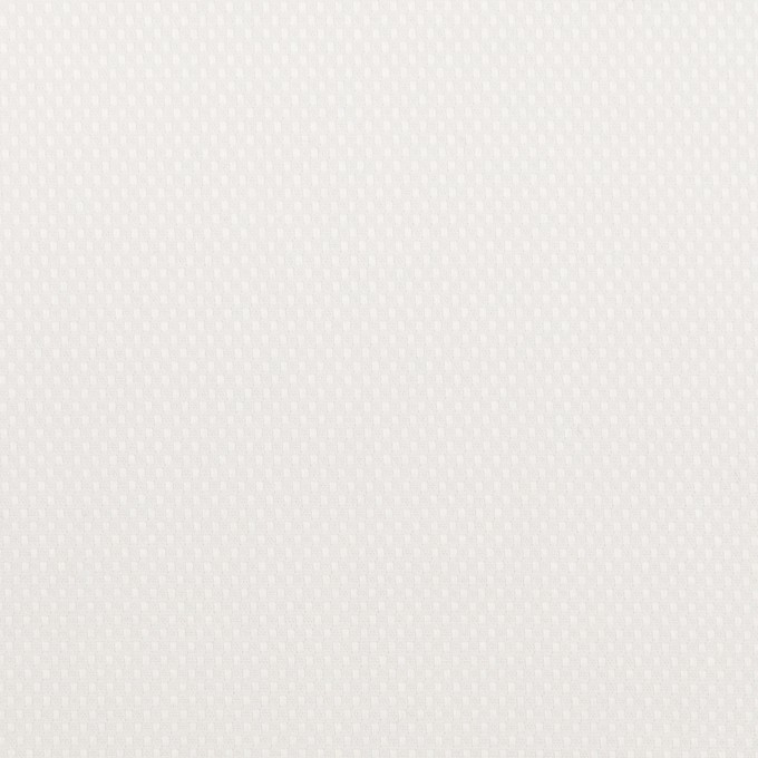 コットン×無地(ホワイト)×斜子織 イメージ1