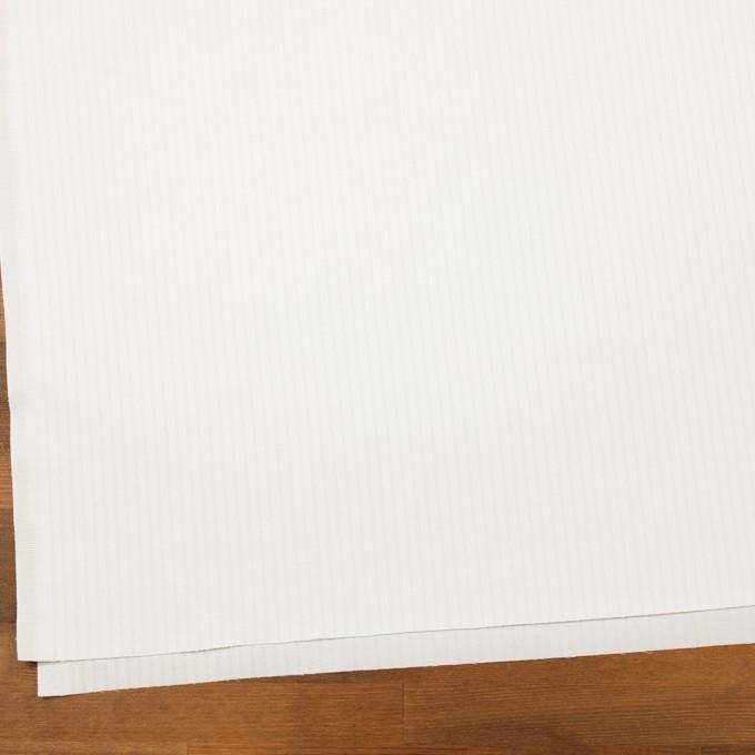 コットン×ストライプ(ホワイト)×ジャガード イメージ2