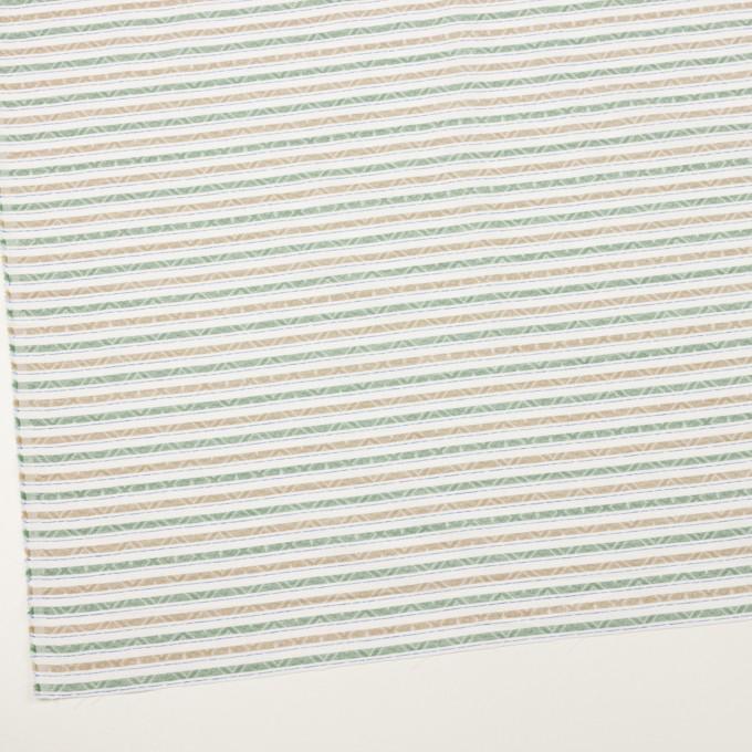 コットン×ボーダー(グリーン)×ジャガード_全3色 イメージ2