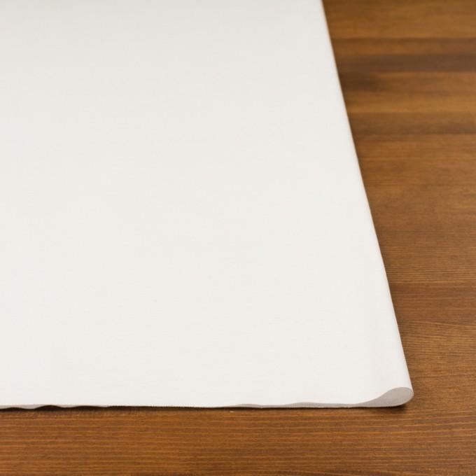 コットン×無地(ホワイト)×スムースニット イメージ3