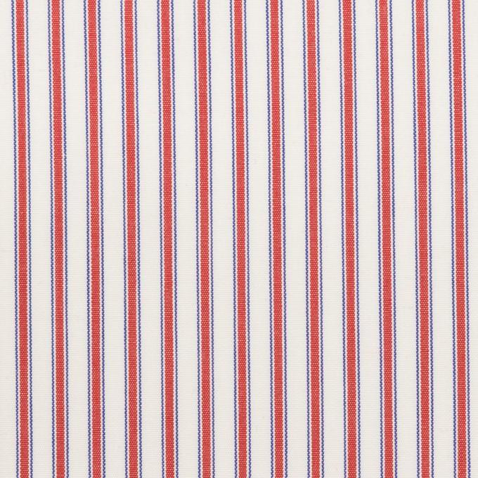 コットン×ストライプ(レッド)×ブロード イメージ1