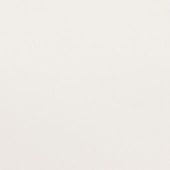 コットン×無地(ホワイト)×オックスフォード