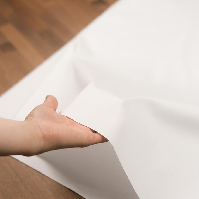 コットン×無地(ホワイト)×オックスフォード イメージ5