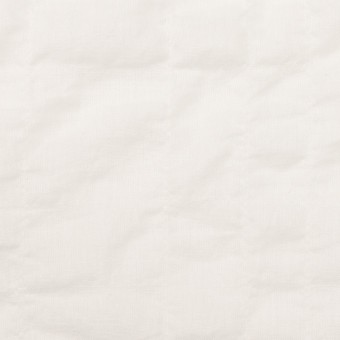 コットン&テンセル混×無地(ホワイト)×ボイルシャーリング