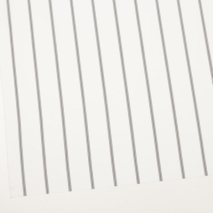 コットン×ストライプ(ホワイト&ブラック)×ローン イメージ2