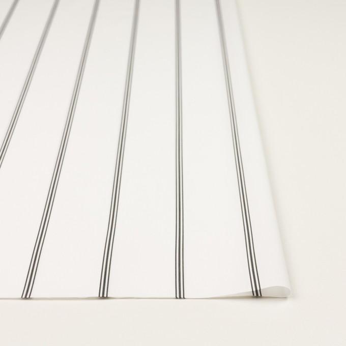 コットン×ストライプ(ホワイト&ブラック)×ローン イメージ3