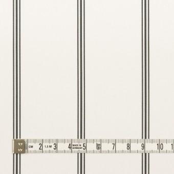 コットン×ストライプ(ホワイト&ブラック)×ローン サムネイル4