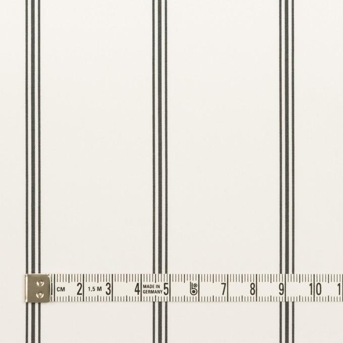 コットン×ストライプ(ホワイト&ブラック)×ローン イメージ4
