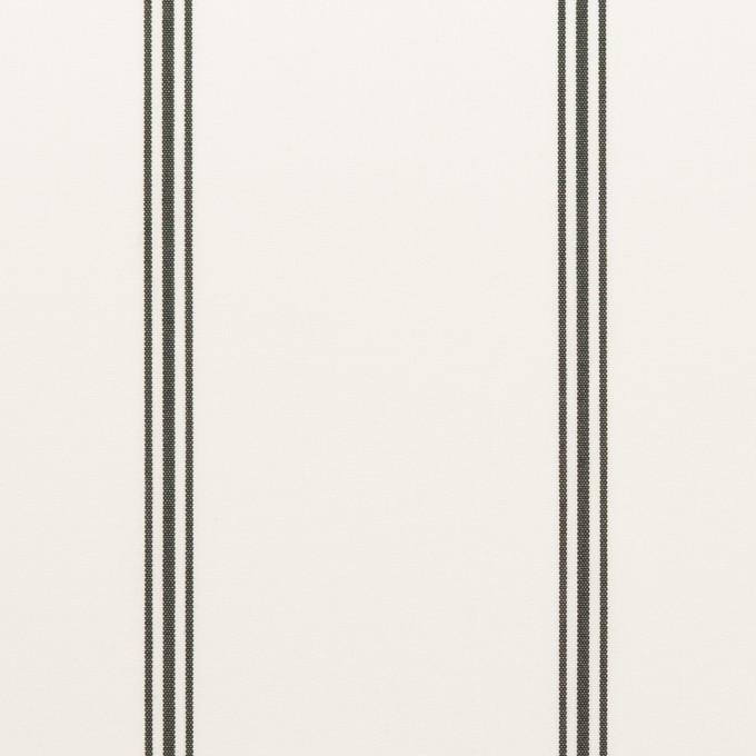コットン×ストライプ(ホワイト&ブラック)×ローン イメージ1