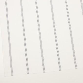 コットン&テンセル×ストライプ(オフホワイト&ネイビー)×ブロード サムネイル2