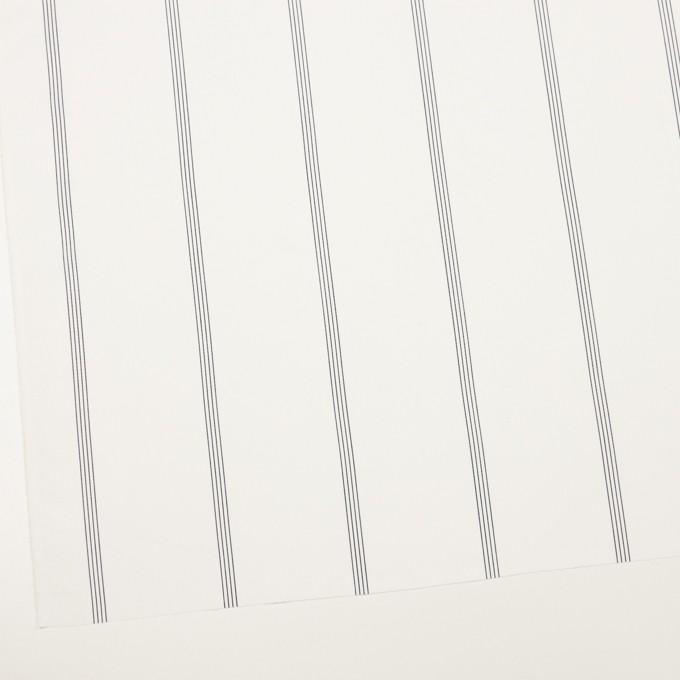 コットン&テンセル×ストライプ(オフホワイト&ネイビー)×ブロード イメージ2