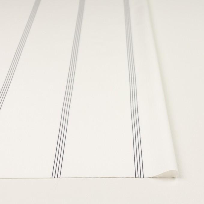 コットン&テンセル×ストライプ(オフホワイト&ネイビー)×ブロード イメージ3