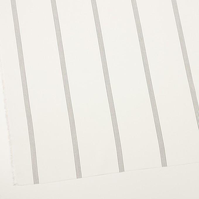 コットン&レーヨン×ストライプ(ミルク&ブラック)×ポプリン イメージ2