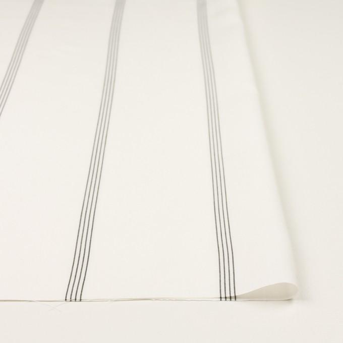 コットン&レーヨン×ストライプ(ミルク&ブラック)×ポプリン イメージ3
