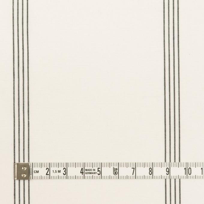 コットン&レーヨン×ストライプ(ミルク&ブラック)×ポプリン イメージ4