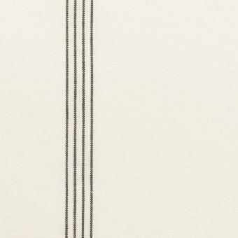 コットン&レーヨン×ストライプ(ミルク&ブラック)×ポプリン