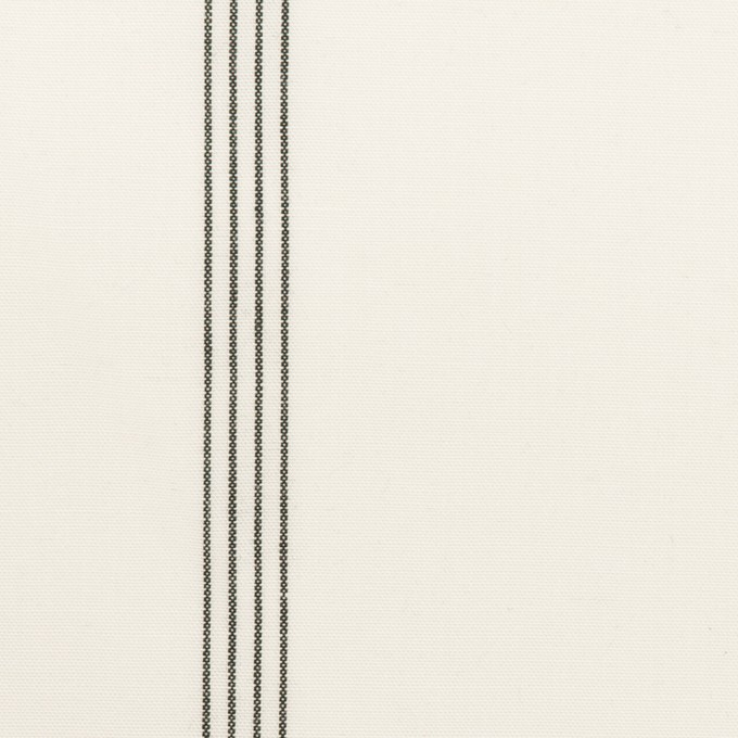 コットン&レーヨン×ストライプ(ミルク&ブラック)×ポプリン イメージ1