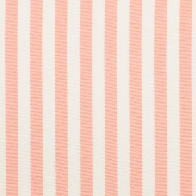 コットン×ストライプ(コーラルピンク)×ブロード イメージ1