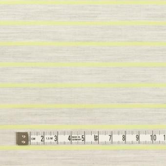 コットン×ボーダー(杢グレー&イエローグリーン)×ローンジャガード サムネイル4